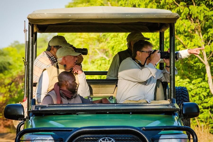 Tasimba - Watching - jeep safari