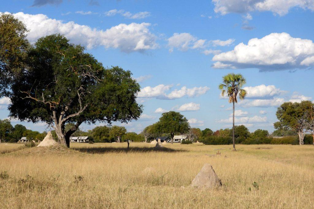 Tasimba Safari - Linkwasha - 7 Days to Change Your Life