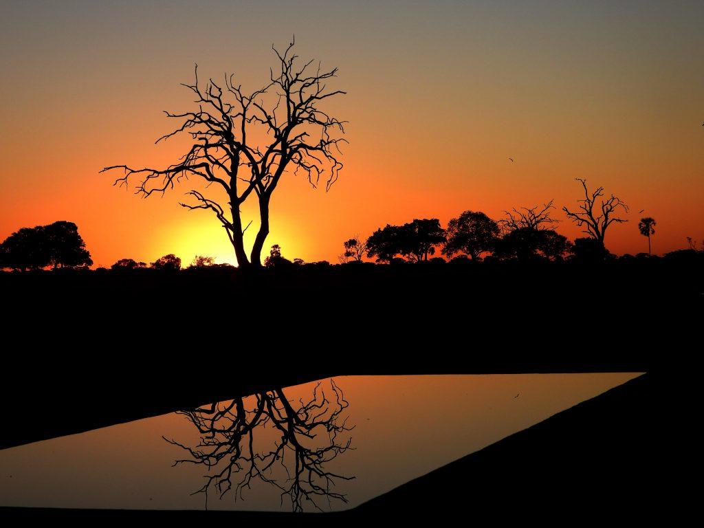 Tasimba Safari, Linkwasha, Sunset